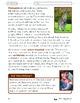Mammals Lesson Plan Grade 2