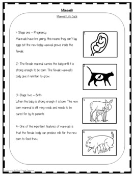 Mammals Life Cycles -  Complete Science Lesson