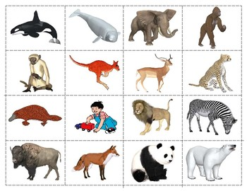 Mammals:  Mini Matching and Vocabulary Enrichment Cards