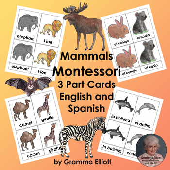 Mammals - Montessori 3 Part Cards in English and Spanish