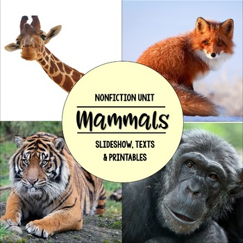 Mammals Nonfiction Close Reading & Visual Vocabulary