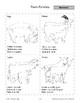 Mammals: Pigs and Farm Families