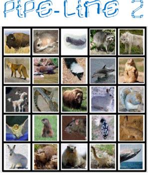 Mammals Pipe Line Game -- Version 2