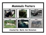 Mammals Posters