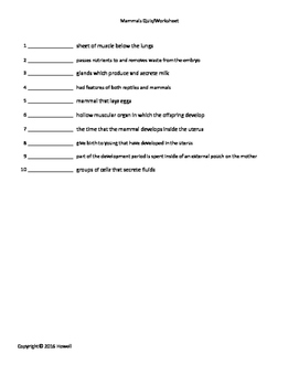 Mammals Quiz/Worksheet for Biology II