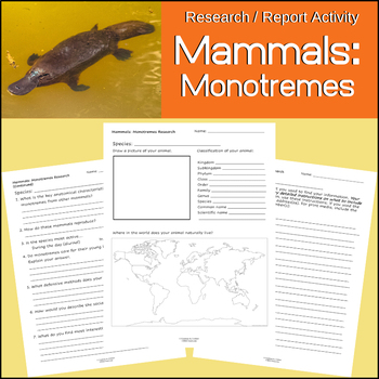 Mammals Research and Report Activity | Monotremes | Egg Laying
