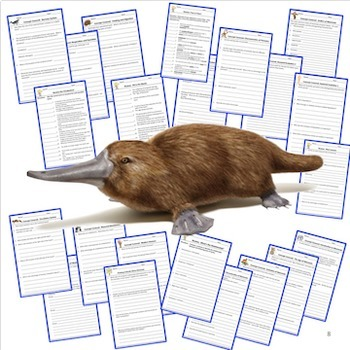 Mammals Warm Ups Interactive Notebook Pages Bell Ringers