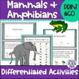 Mammals and Amphibians: Speech Language Therapy