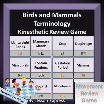 Mammals and Birds Terminology -- Kinesthetic Review Game