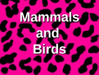 Vertebrates: Mammals and Birds! (some animations and video clips)