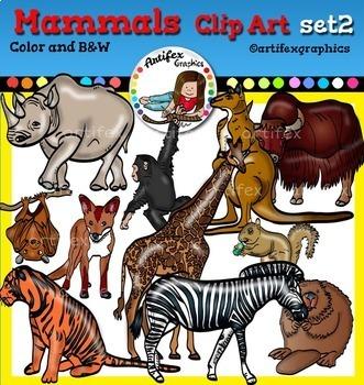 Mammals clip art Bundle clip art. Color and B&W- 82 items!