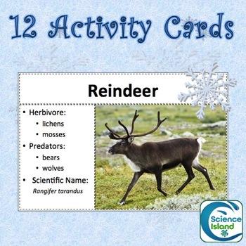 Mammals of the Tundra FREE Activity