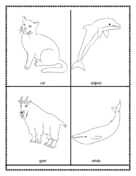 Mammals picture cards