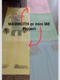 Measurement Math Project