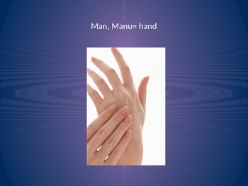 Man Manu Word Root PowerPoint