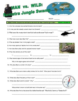 Man vs Wild Jungle Swamp / Sumatra (video worksheet)