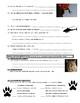 Man vs Wild Namibia, Africa (video worksheet)