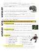 Man vs Wild North Africa (Sahara Desert) (video worksheet)