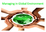 Managing in a Global Environment (Management)