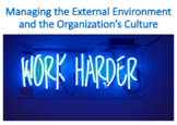 Managing the External Environment and the Organization's Culture (Management)