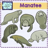 Manatee Clip art  Summer aquatic animals