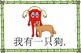 Mandarin Chinese Sentence Flashcards/A4 Book -宠物/pets