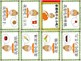 Mandarin Chinese Sentence Pattern Mini book 小吃/snacks - What do you want to eat?
