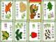 Mandarin Chinese Sentence Pattern Mini book 蔬菜 - buying vegetables