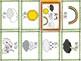 Mandarin Chinese Vocabulary Mini book - weather 天气