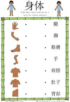 Mandarin Chinese Worksheets 身体/body