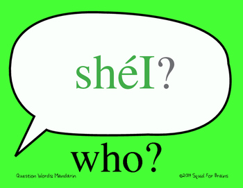 Mandarin Wall Signs: Question Words w/ Pinyin Comprehensible Input in Chinese