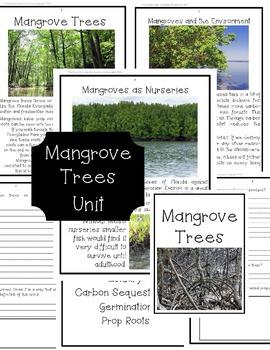 Mangrove Trees Unit