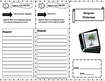 Mangrove Wilderness Storytown Comprehension Trifold