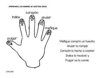 Mano- Mis dedos