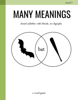 Many Meanings Vocabulary Game