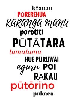Maori Instruments - Taonga Puoro