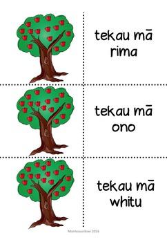 Maori numbers match 0-20