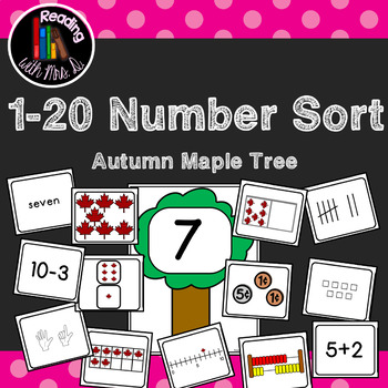 Number Subitizing Sort 1-20