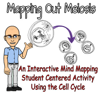 Mapping Out Meiosis - Mind Mapping & Gamete Production