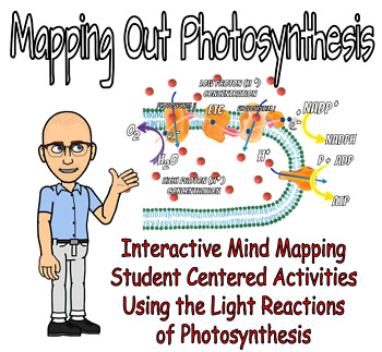 Mapping Out Photosynthesis - Mind Mapping & the Light Reactions