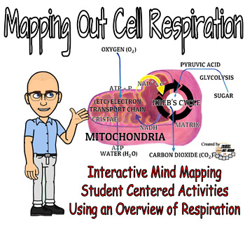 Mapping Out Respiration - Mind Mapping an Overview of Cell Respiration