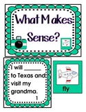 Maps and Globes- What Makes Sense? Literacy Center