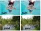 April Pond Life Vocabulary Lesson Plans