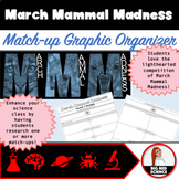 March Mammal Madness Animal Match-up Graphic Organizer