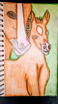 Mare and Foul - Mother and Baby Horse Abstract Drawing