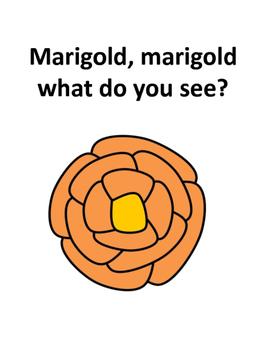 Marigold, Marigold