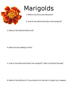 Marigolds Mini Quiz