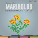 Marigolds by Eugenia W. Collier: Quiz, Mentor Sentences, Writing