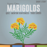 Marigolds by Eugenia W. Collier: Quiz, Mentor Sentences, Writing