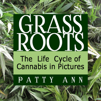 Marijuana - Cannabis - Weed - Pot = Grass Roots > Life Cycle in Pictures (PPT)